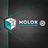 Play & Download Point Of Pleasure - Single by Molok | Napster