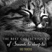 The Best Collection of Sounds to Sleep To by Various Artists