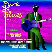 Pure Blues, Vol. 3 von Various Artists