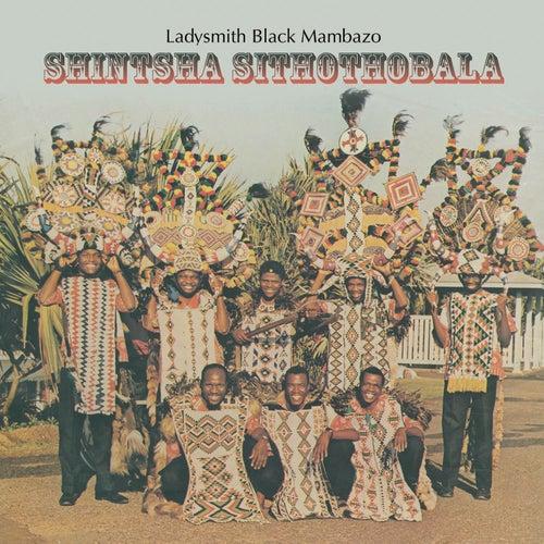 Play & Download Shintsha Sithothobala by Ladysmith Black Mambazo | Napster