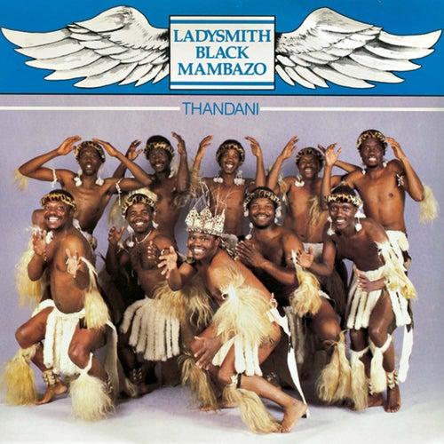 Play & Download Thandani by Ladysmith Black Mambazo | Napster