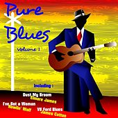 Pure Blues, Vol. 1 von Various Artists