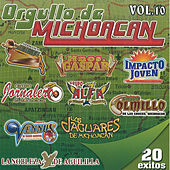 Play & Download Orgullo De Michoacan by Various Artists | Napster