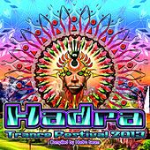 Play & Download Hadra Trance Festival 2013 (Compiled By Hadra Team) by Various Artists | Napster