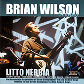 Brian Wilson Tributo by Various Artists