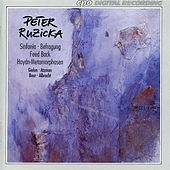 Ruzicka: Sinfonia - Befragung - Feed Back - Haydn-Metamorphosen by Various Artists