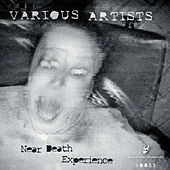 Play & Download Near Death Experience by Various Artists | Napster