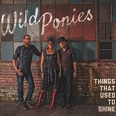Things That Used to Shine by Wild Ponies