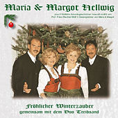 Play & Download Fröhlicher Winterzauber by Various Artists | Napster