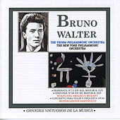 Play & Download Grandes Virtuosos de la Música: Bruno Walter, Vol.2 by Bruno Walter | Napster