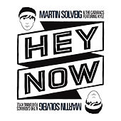 Hey Now - Remixes by Martin Solveig