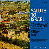 Salute To Israel (Cd Edition) by Feenjon Group