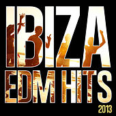 Play & Download Ibiza EDM Hits 2013 by Various Artists | Napster