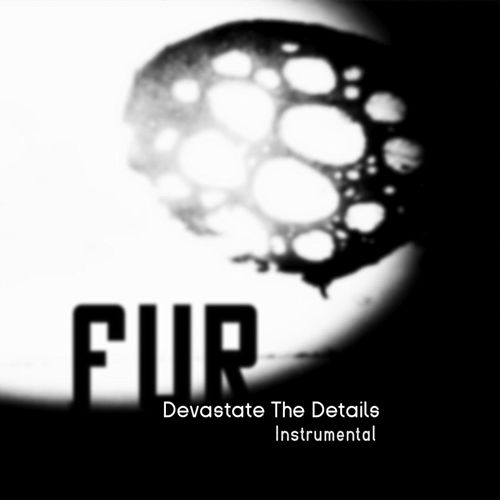 Devastate the Details Instrumental by Fur