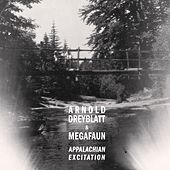 Play & Download Appalachian Excitation by Arnold Dreyblatt | Napster