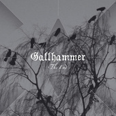 The End by Gallhammer