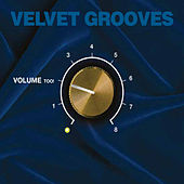 Velvet Grooves Volume Too! by Various Artists