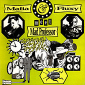 Play & Download Mafia & Flux Meet Mad Professor by Mafia & Fluxy | Napster