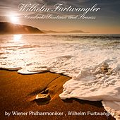 Wilhelm Furtwangler Conducts Smetana and Strauss by Wilhelm Furtwängler