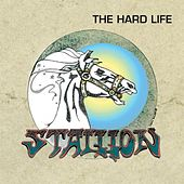 The Hard Life by Stallion