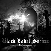 Ain't No Sunshine When She's Gone by Black Label Society