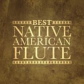 Play & Download Best Native American Flute by Various Artists | Napster