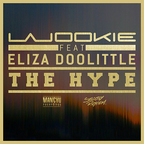 Play & Download The Hype - Single by Wookie | Napster