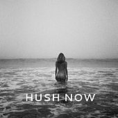 Hush Now by Sunny Levine