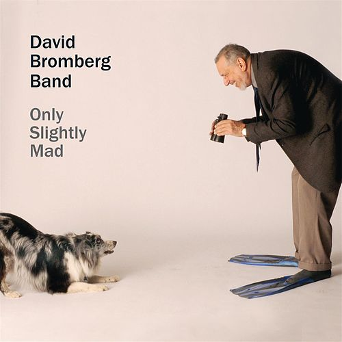 Play & Download Only Slightly Mad by David Bromberg | Napster