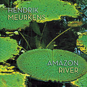 Play & Download Amazon River by Hendrik Meurkens | Napster