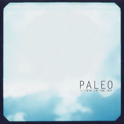 A View Of The Sky by Paleo