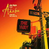 The Way by Joey Negro