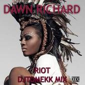 Riot (DJ Tomekk Remix) by Dawn Richard