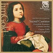 Play & Download Buxtehude: Sacred Cantatas by Cantus Cölln and Konrad Junghänel | Napster