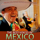 Play & Download Mexican Rancheras and Corridos. The Best Voices in Mexico by Various Artists | Napster