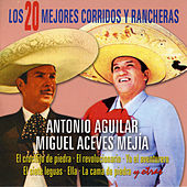 Play & Download Los 20 Mejores Corridos y Rancheras by Various Artists | Napster