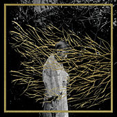 Engravings by Forest Swords