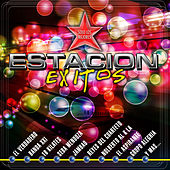 Play & Download Estacion Exitos by Various Artists | Napster