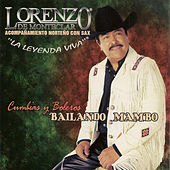 Play & Download Bailando Mambo by Lorenzo De Monteclaro | Napster