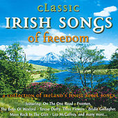 Play & Download Irish Songs of Freedom by Various Artists | Napster