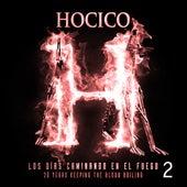 Los Días Caminando en el Fuego 2 by Hocico