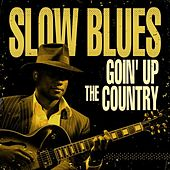 Slow Blues Goin' Up the Country by Various Artists