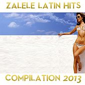 Play & Download Zalele Compilation 2013 by Various Artists | Napster