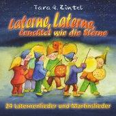 Laterne, Laterne, leuchtet wie die Sterne (24 Laternenlieder und Martinslieder) by Tara G. Zintel