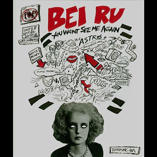 You Won't See Me Again by Bei Ru