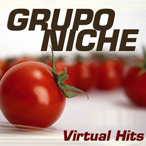 Play & Download Virtual Hits by Grupo Niche | Napster