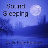 Sound Sleeping by Harry Henshaw
