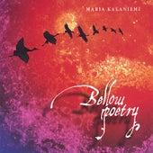 Bellow Poetry by Maria Kalaniemi