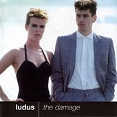The Damage by Ludus