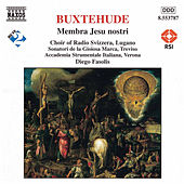 Play & Download BUXTEHUDE: Membra Jesu Nostri by Accademia Instrumentale Italiana | Napster